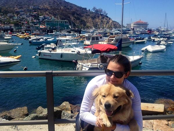 Is Catalina Island Dog Friendly