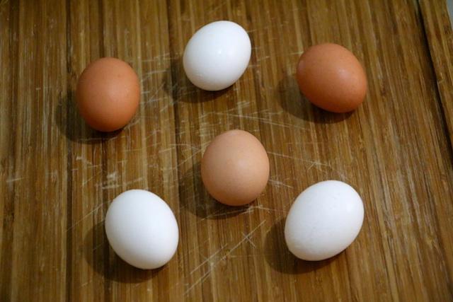 cage-free-pasture-raised-organic-eggs