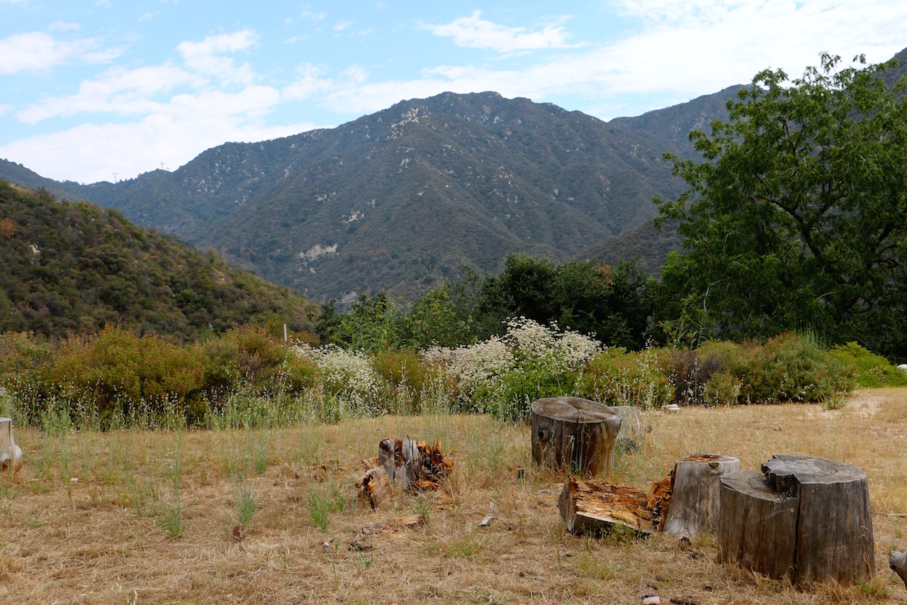 chandry-flat-angeles-national-forest