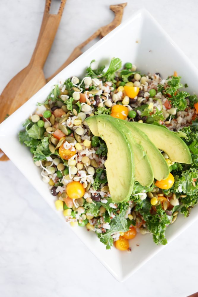 predominantly plant-based diet