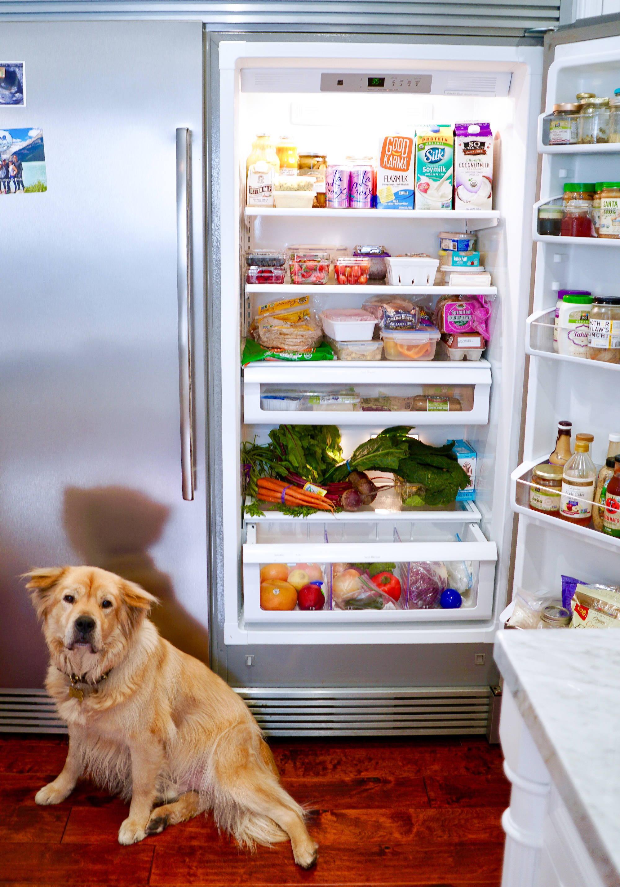 plant-based diet refrigerator