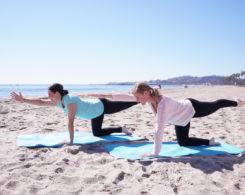 prenatal pilates workout