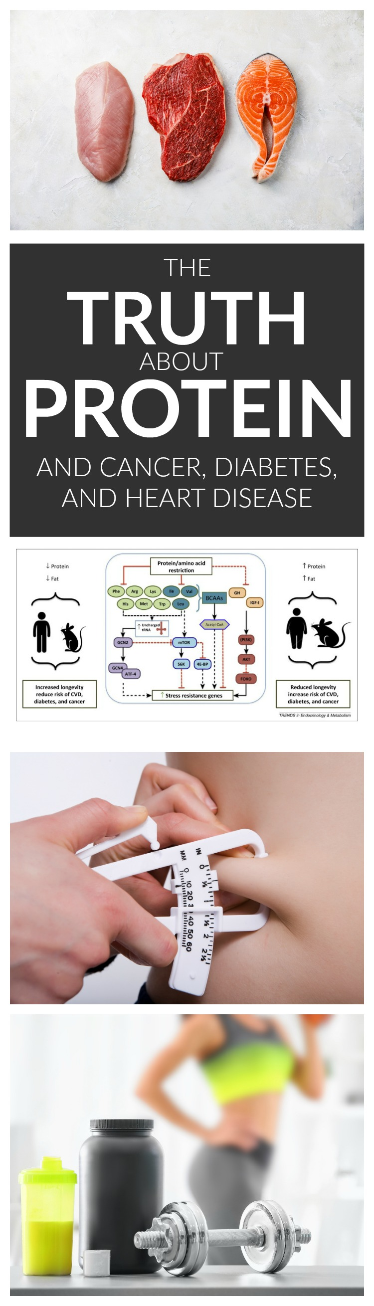 The Truth About Protein and Cancer, Diabetes, and Heart Disease