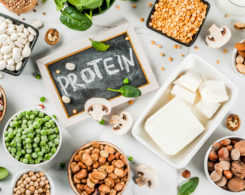 vegan protein myths