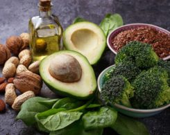 plant-based ketogenic diet